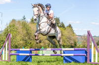 Show Jumping & Working Hunter